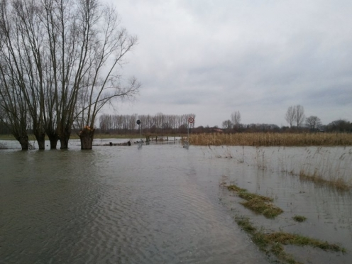 Lippehochwasser Januar 2011